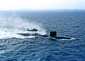 Naval sub
